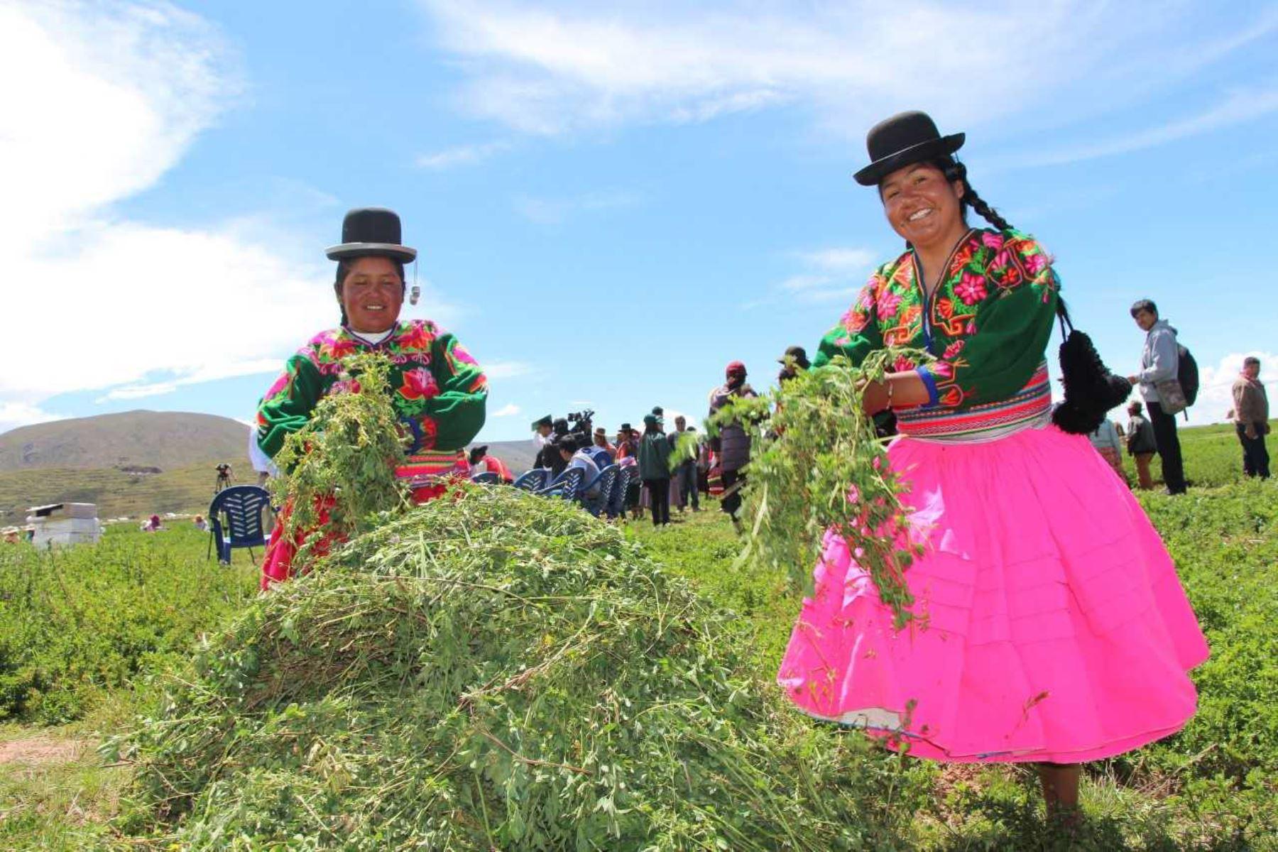 Ministerio de Agricultura firmará acuerdo con China .