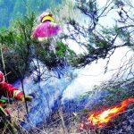 Incendios forestales arrasan en Junín, Huánuco y Cajamarca