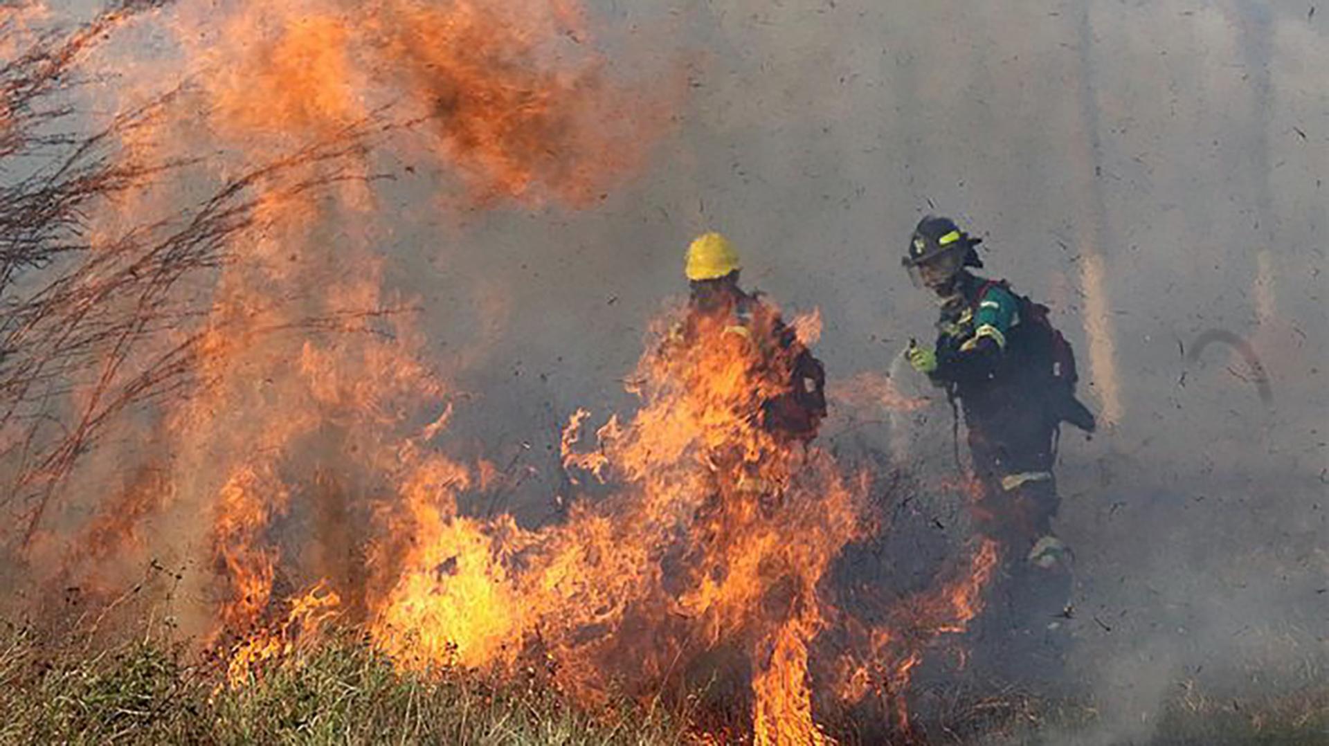 Se agravan incendios en Bolivia, peligra 70 mil cabezas de ganado