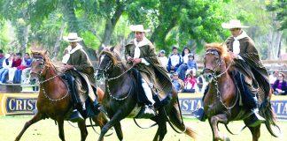 Arequipa albergará certamen del caballo peruano de paso