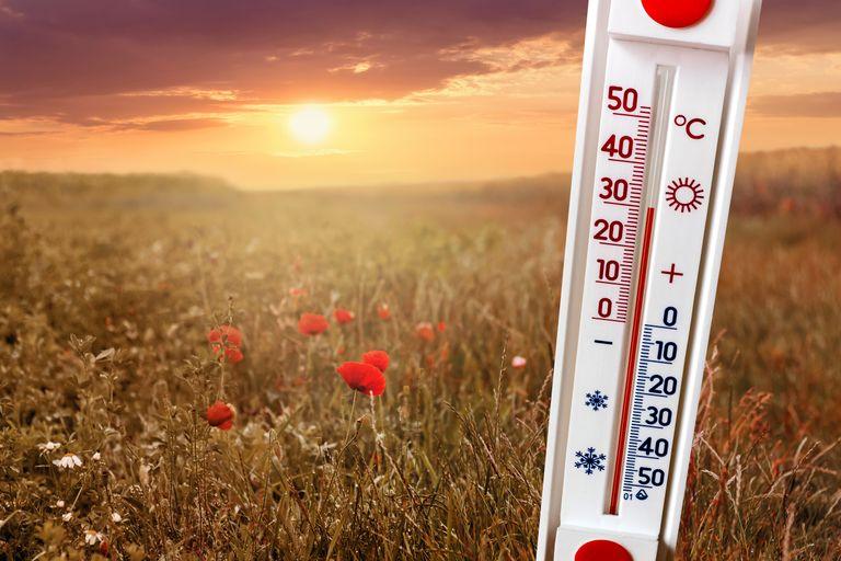 Temperatura en enero se elevó 6° más de lo normal a nivel mundial