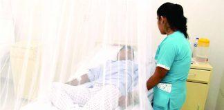 El dengue llegó a la capital y autoridades sanitarias emiten alerta epidemiológica.