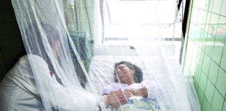 El dengue está a la espera de medidas que logren contener los contagios.