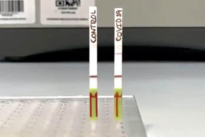 biologos peruanos