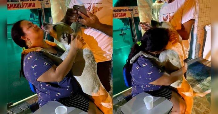 Perro abraza a mujer en Brasil