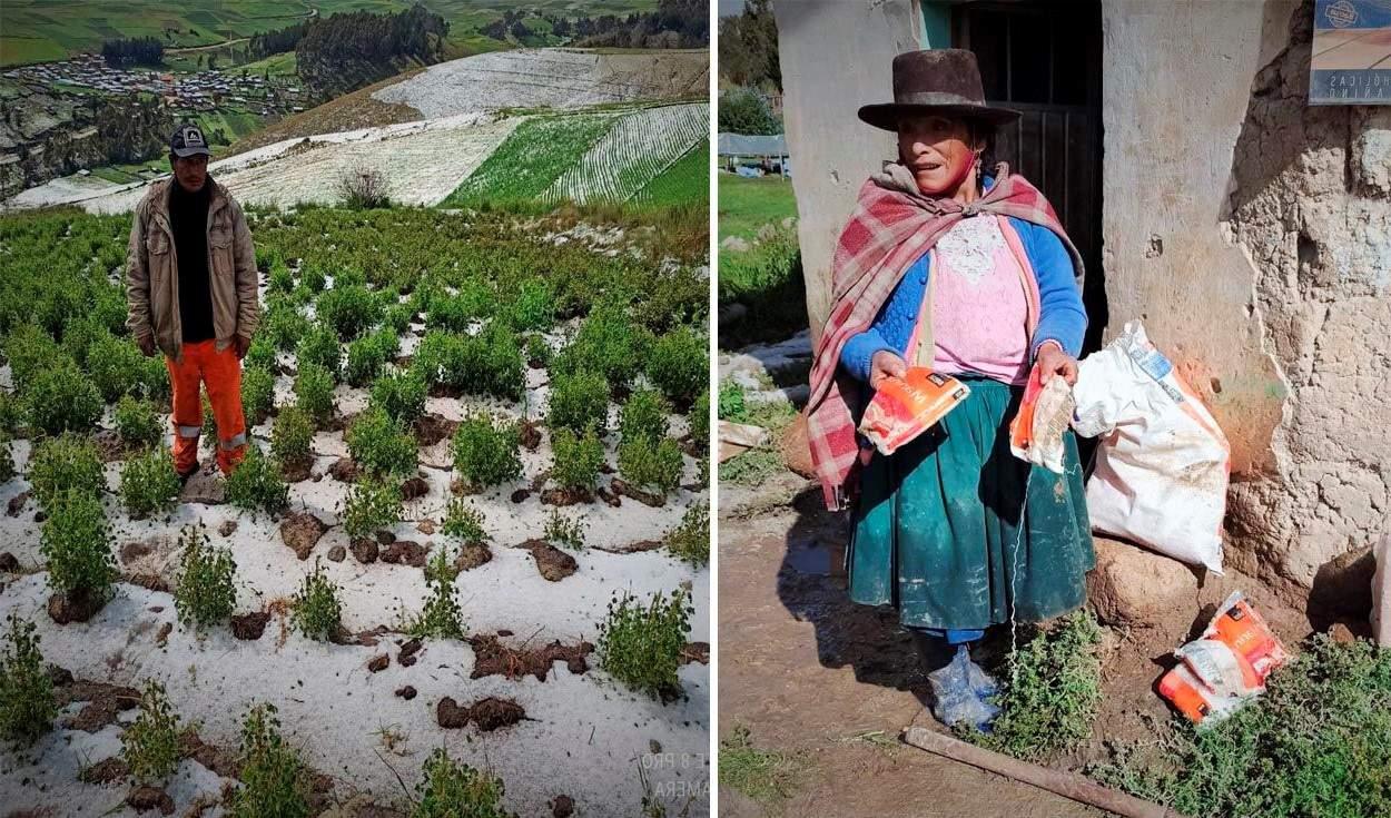 Apurímac: Granizada provocó daños en viviendas y cultivos