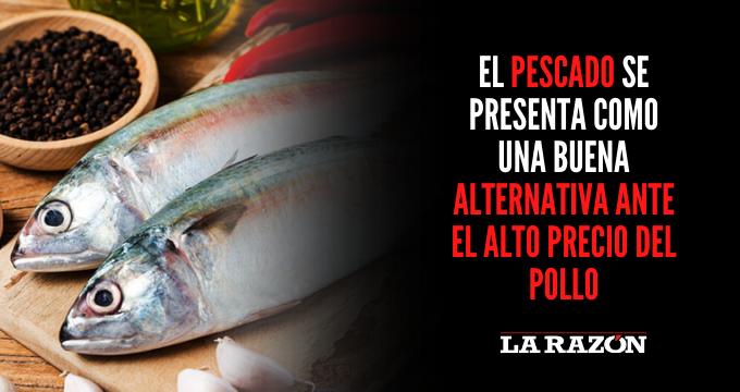 El pescado se presenta como una buena alternativa ante el alto precio del pollo