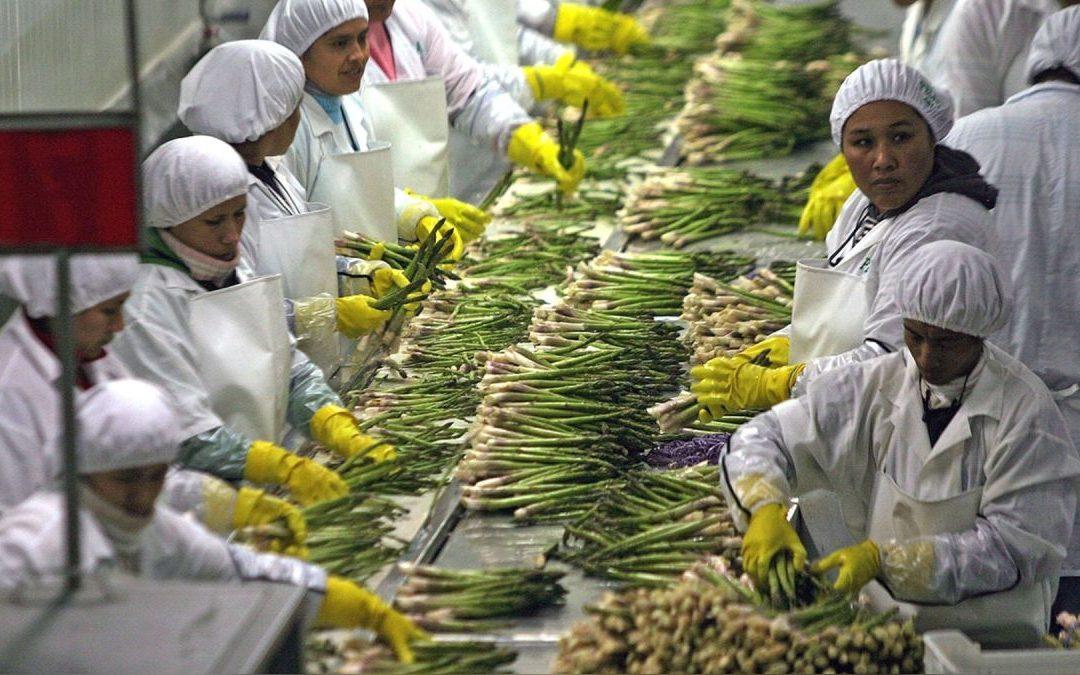Ministerio de Trabajo aprobó listado de empresas que recibirán subsidio