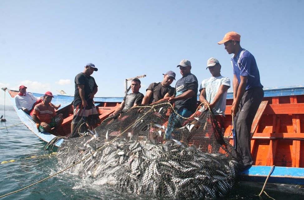 PRODUCE reformará la Ley de Pesca para devolver las 5 millas a la pesca artesanal