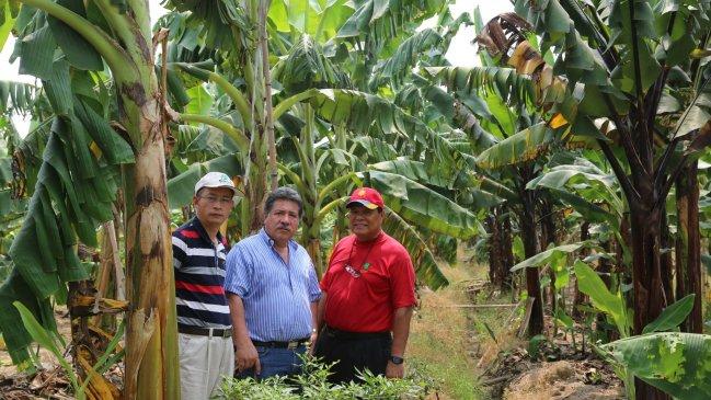 Científicos chinos y latinoamericanos trabajan en diversidad biológica